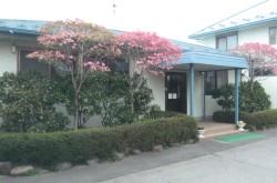 大江動物病院
